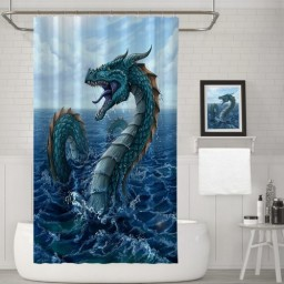 What Type of Dragon Are You No Wings Bathroom Decor Shower Curtains